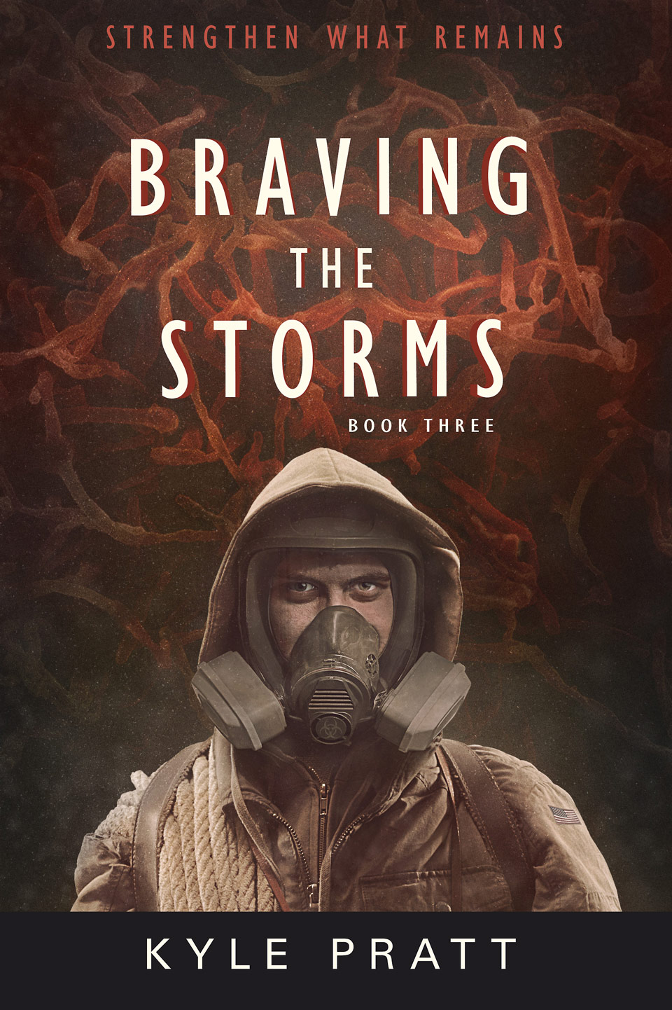 Braving the Storms - book cover design